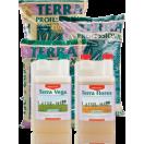Canna - Terra Vega - Flores