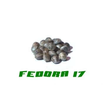 HANFSAMEN FEDORA 17 200STK