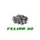 HANFSAMEN FELINA 32 200STK