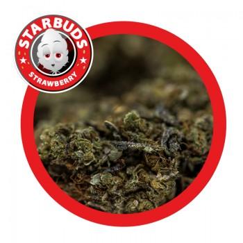 Starbuds Strawberry 12gr