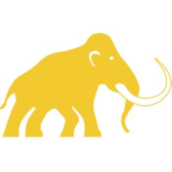 Mammoth Elite 300