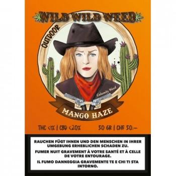 MANGO HAZE - WILD WILD WEED - SCHWEIZER CBD BLÜTEN