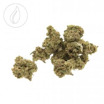 Hempy Cannatonic Indoor Small Buds 25g