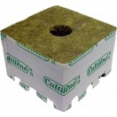 Grodan Startblock Box 10 x 10 x 6,5 cm 216 Stk Loch 28mm