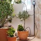 Automatisches Bewässerungssystem