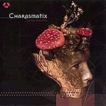 Charasmatix - Soma Agents