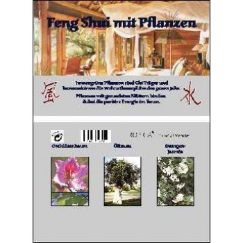 Feng Shui mit Pflanzen