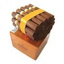COHIBA ROBUSTOS 25 zigarren
