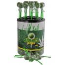 Cannabis Pops - Lolly 10 stk