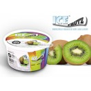 Ice Frutz Gel - 100g - Kiwi Fruit